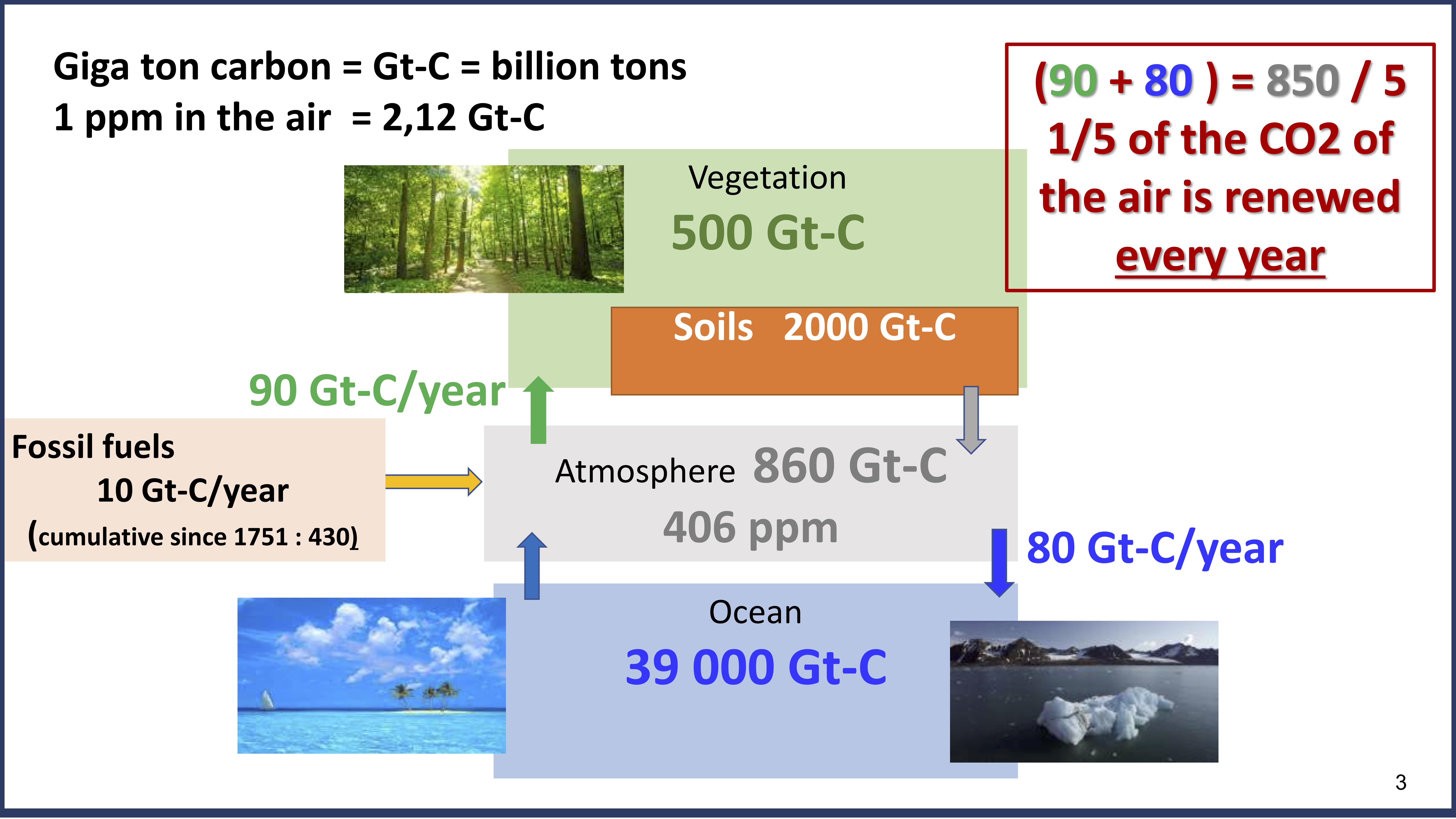 förklara Radiocarbon dating av fossil dejtingsajt för indiska singlar